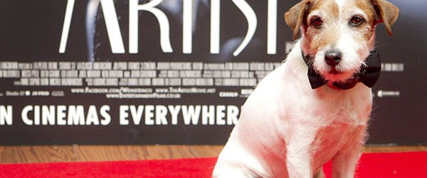 3 Animal Actors You Never Thought to Thank