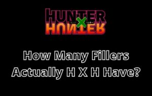 How Many Fillers Hunter X Hunter Have